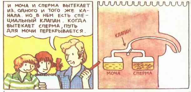 gifki-pizdi
